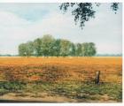 Fruehling-in-Voigten-Triptychon
