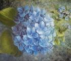 BlaueHortensie