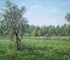 1_Der-Pflaumenbaum