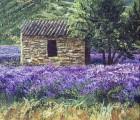 Lavendel-mit-Haus
