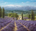 1_In-der-Provence