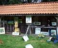 wez-12082007-009