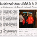 Ausstellungseröffnung Bürgerhalle Walsrode 2013