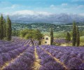 in-der-provence