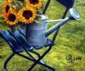 Sonnenblumen auf dem Stuhl
