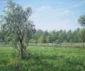 der-pflaumenbaum